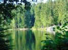 Fichtelsee Wald und Ruhe_1